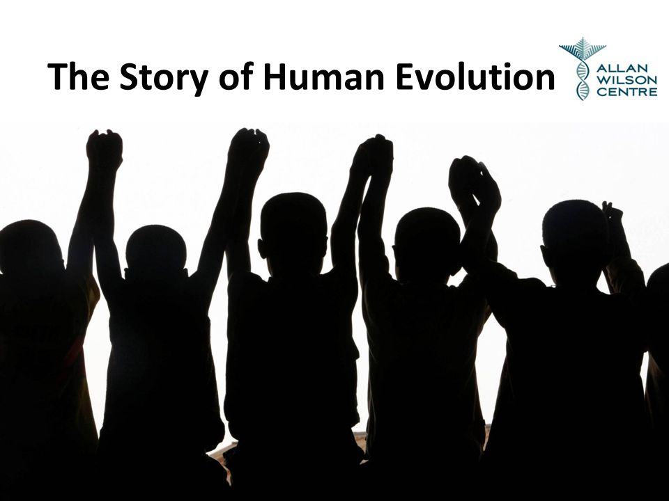 The Story of Human Evolution