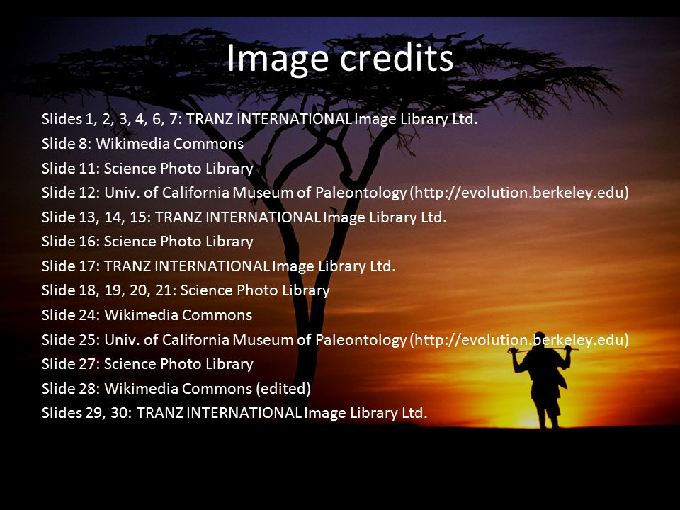 Image credits Slides 1, 2, 3, 4, 6, 7: TRANZ INTERNATIONAL Image Library Ltd. Slide 8: Wikimedia Commons.