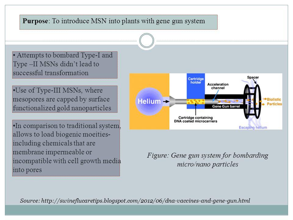 Figure: Gene gun system for bombarding micro/nano particles