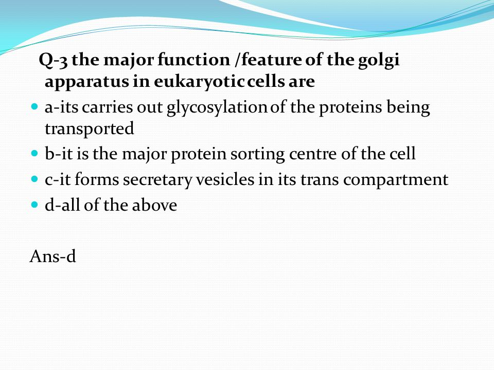 Q-3 the major function /feature of the golgi apparatus in eukaryotic cells are