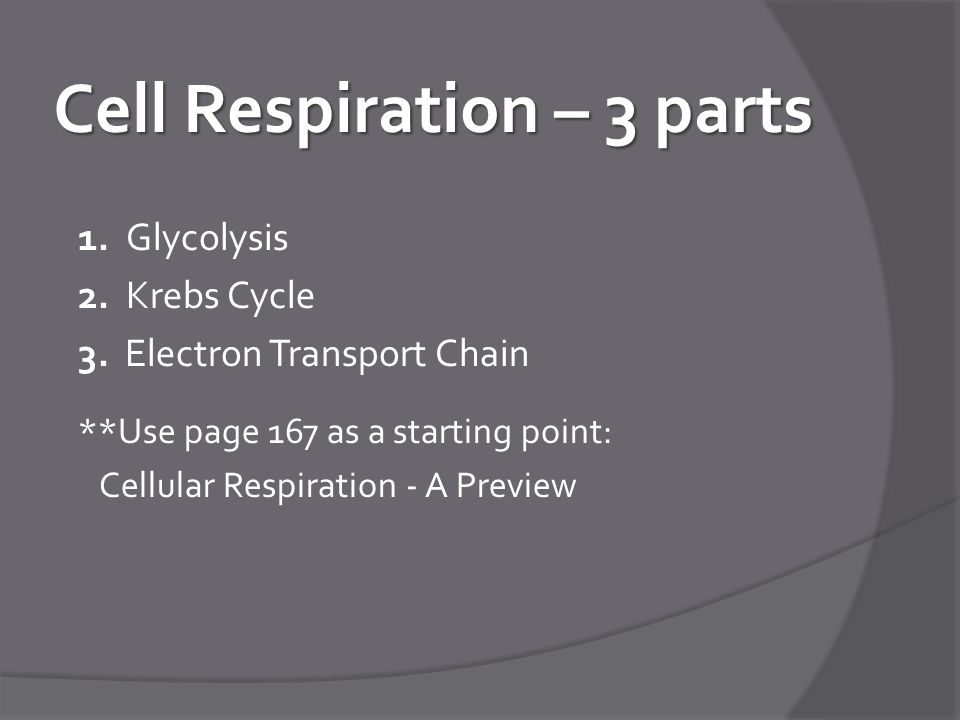 Cell Respiration – 3 parts