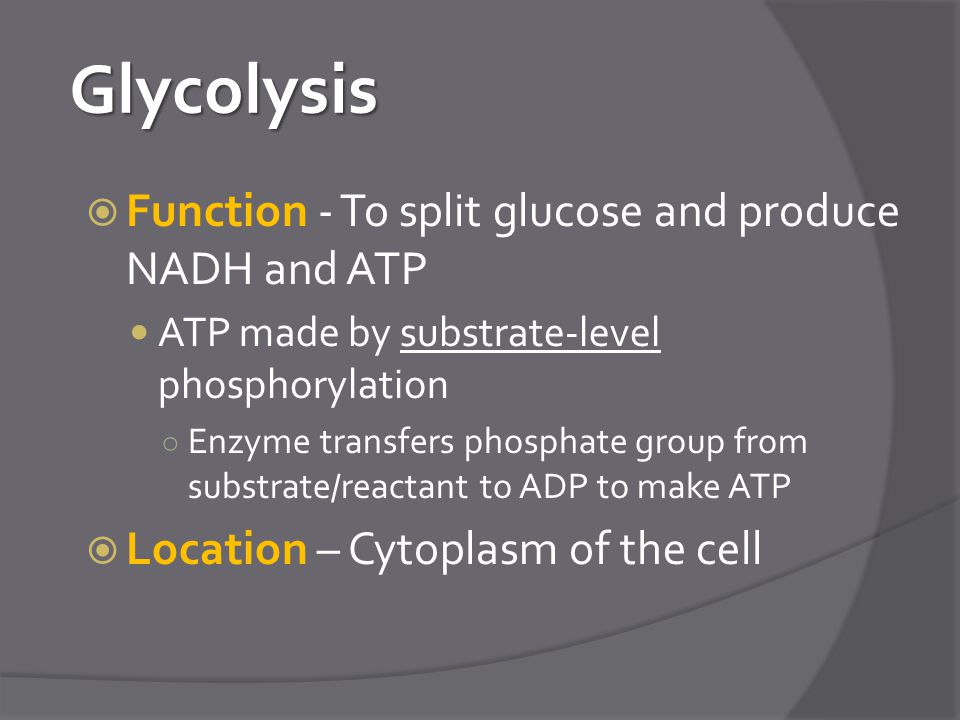 Glycolysis Function - To split glucose and produce NADH and ATP