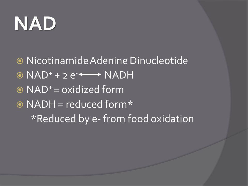 NAD Nicotinamide Adenine Dinucleotide NAD+ + 2 e- NADH