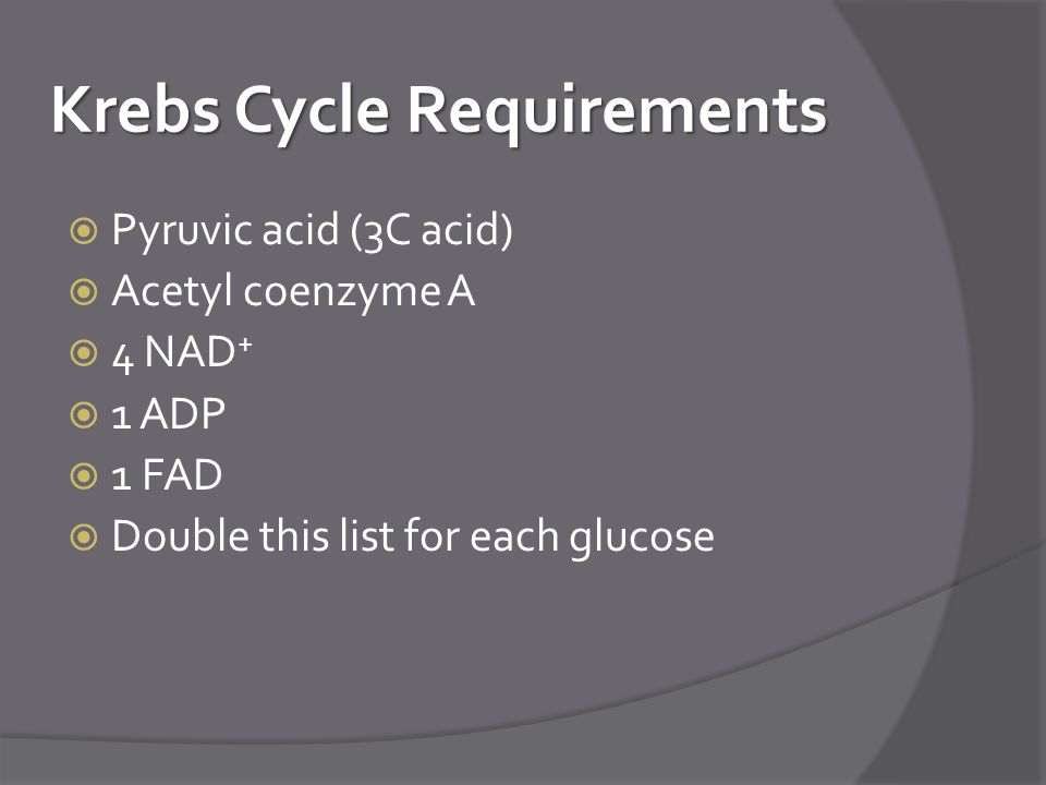 Krebs Cycle Requirements