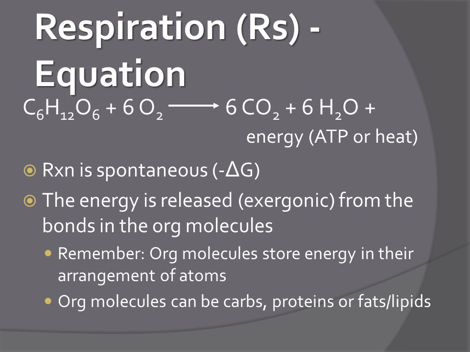 Respiration (Rs) - Equation
