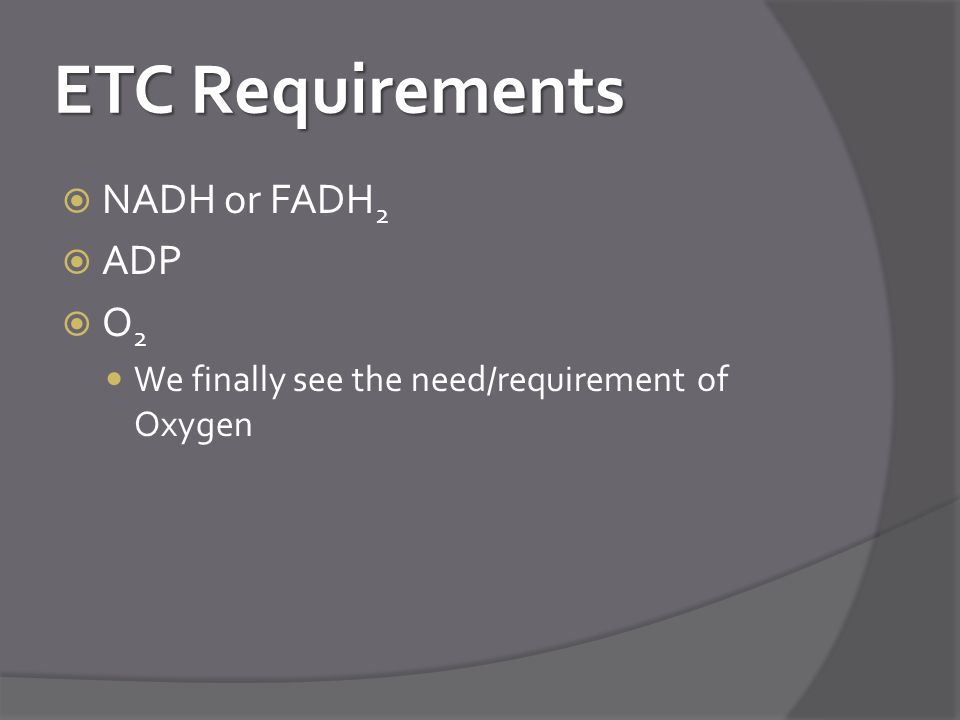 ETC Requirements NADH or FADH2 ADP O2