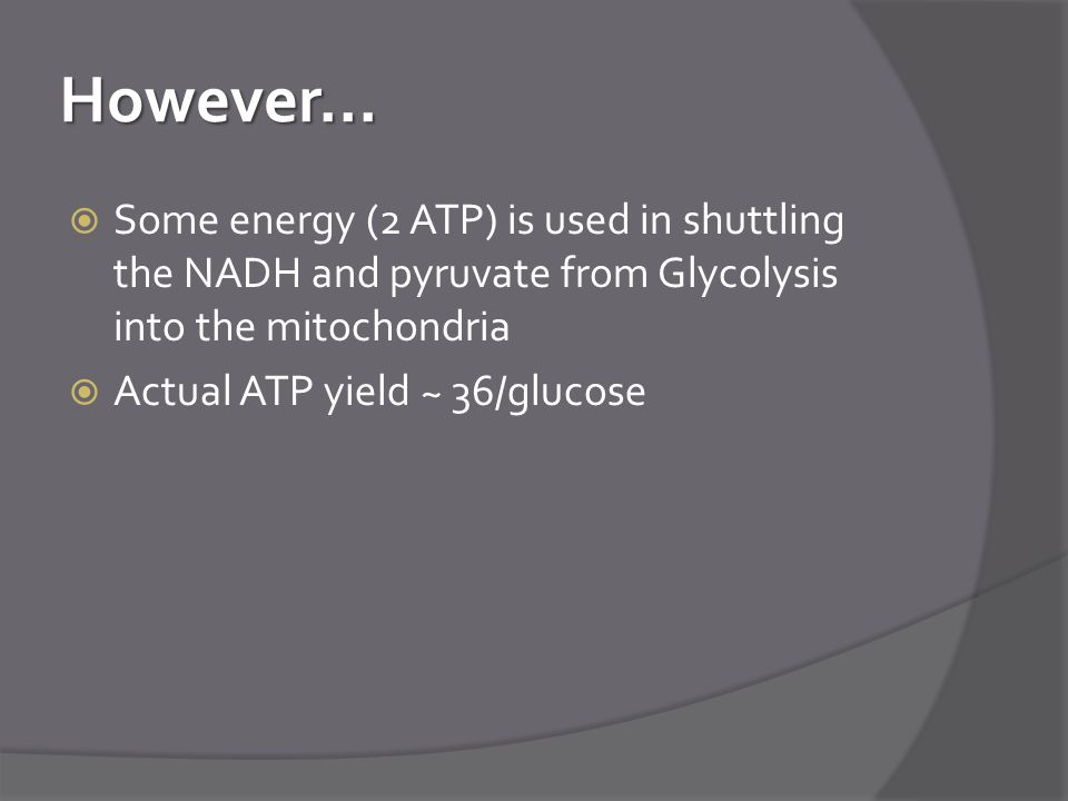 However... Some energy (2 ATP) is used in shuttling the NADH and pyruvate from Glycolysis into the mitochondria.