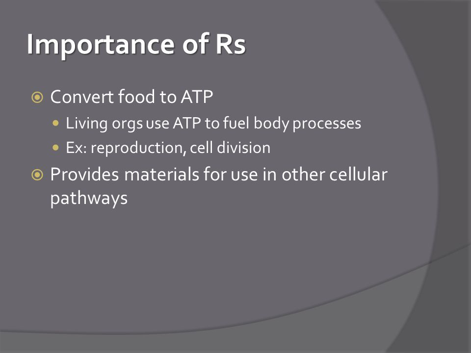 Importance of Rs Convert food to ATP