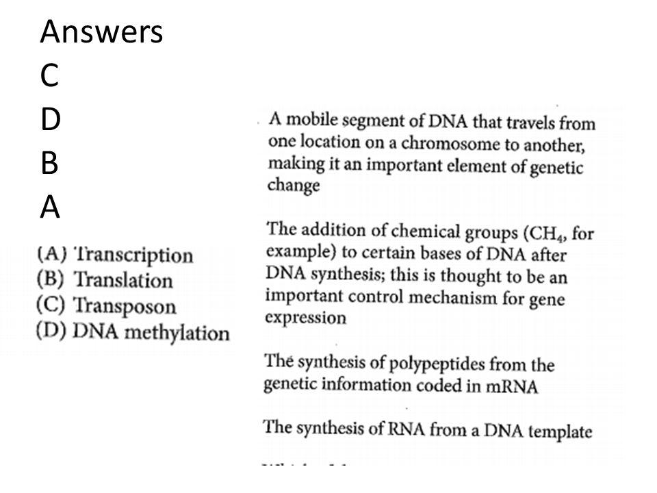 Answers C D B A