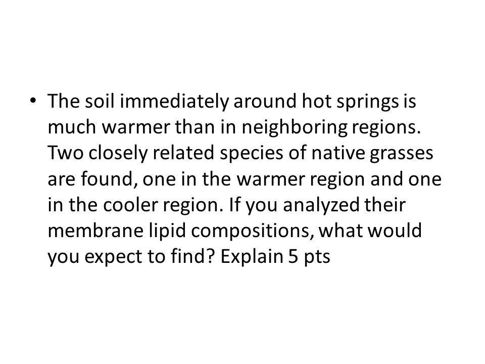 The soil immediately around hot springs is much warmer than in neighboring regions.