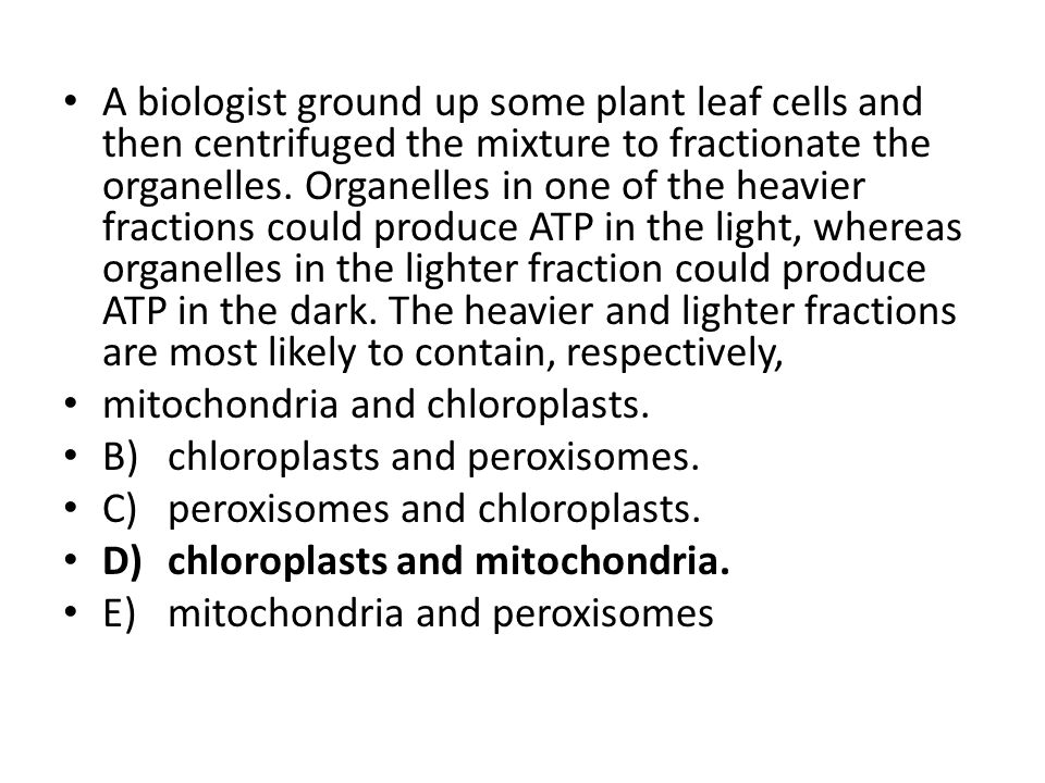A biologist ground up some plant leaf cells and then centrifuged the mixture to fractionate the organelles. Organelles in one of the heavier fractions could produce ATP in the light, whereas organelles in the lighter fraction could produce ATP in the dark. The heavier and lighter fractions are most likely to contain, respectively,