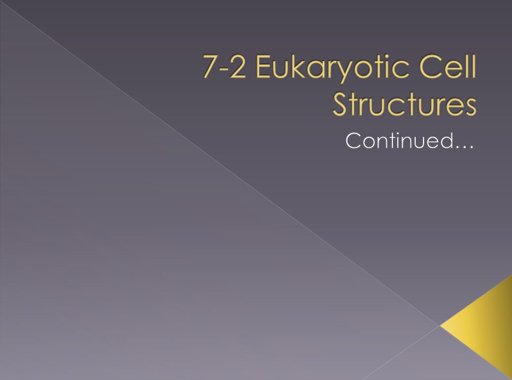 7-2 Eukaryotic Cell Structures