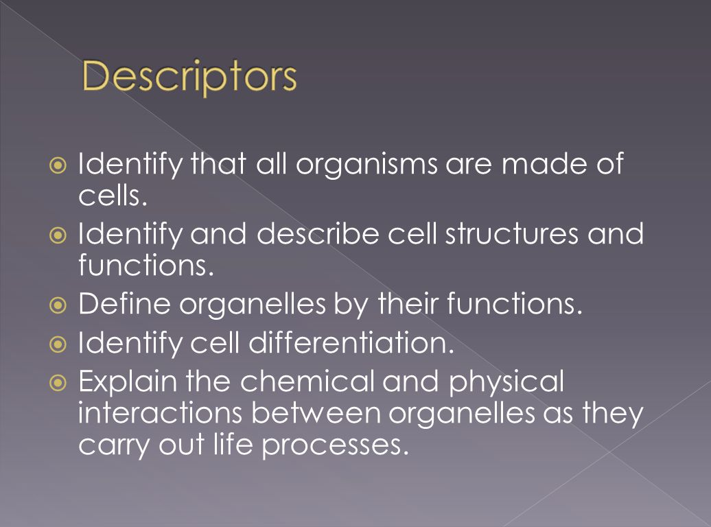 Descriptors Identify that all organisms are made of cells.