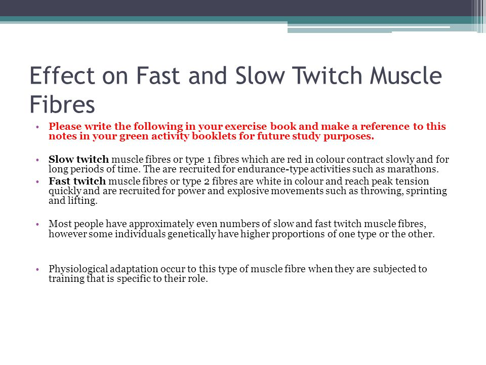 Effect on Fast and Slow Twitch Muscle Fibres