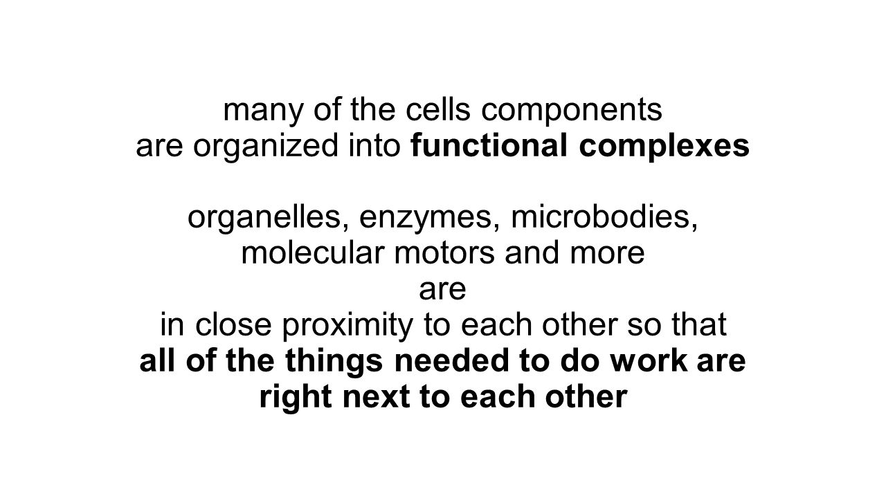 many of the cells components are organized into functional complexes organelles, enzymes, microbodies, molecular motors and more are in close proximity to each other so that all of the things needed to do work are right next to each other