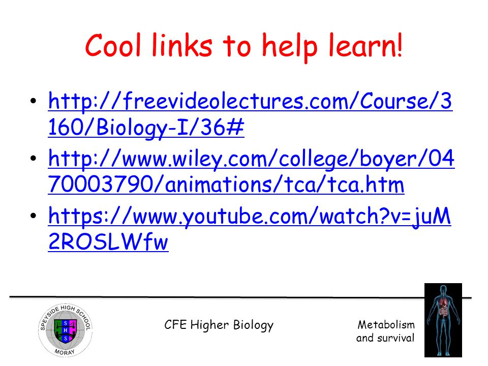 Cool links to help learn!