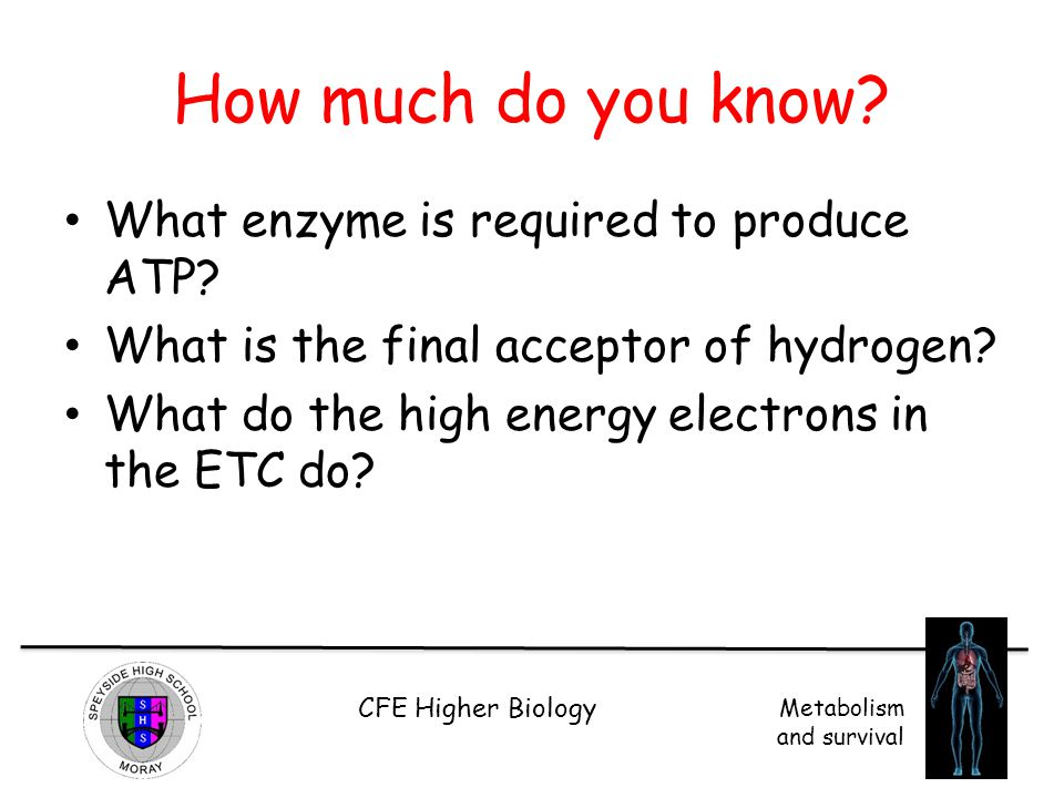 How much do you know What enzyme is required to produce ATP