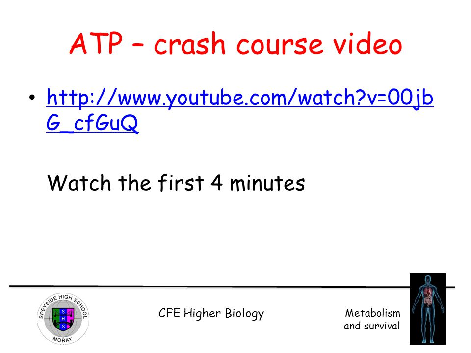 ATP – crash course video