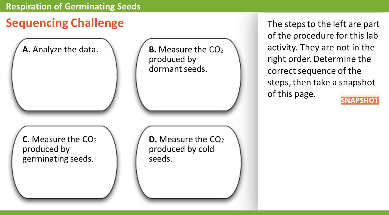 Sequencing Challenge Respiration of Germinating Seeds