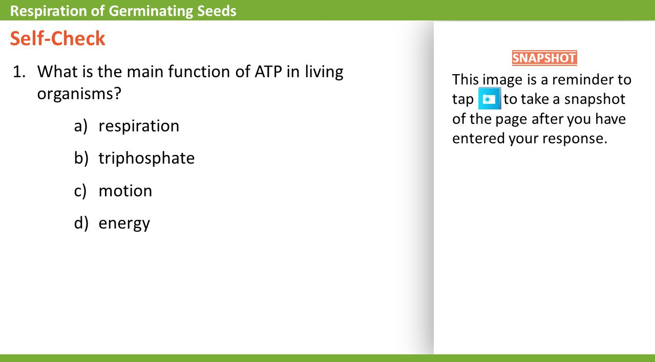 Self-Check What is the main function of ATP in living organisms