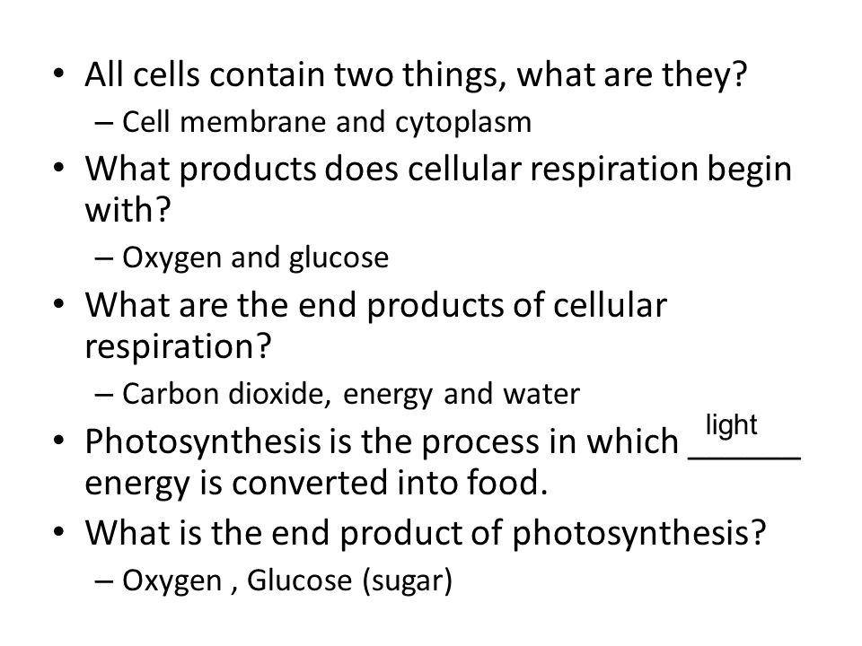 All cells contain two things, what are they