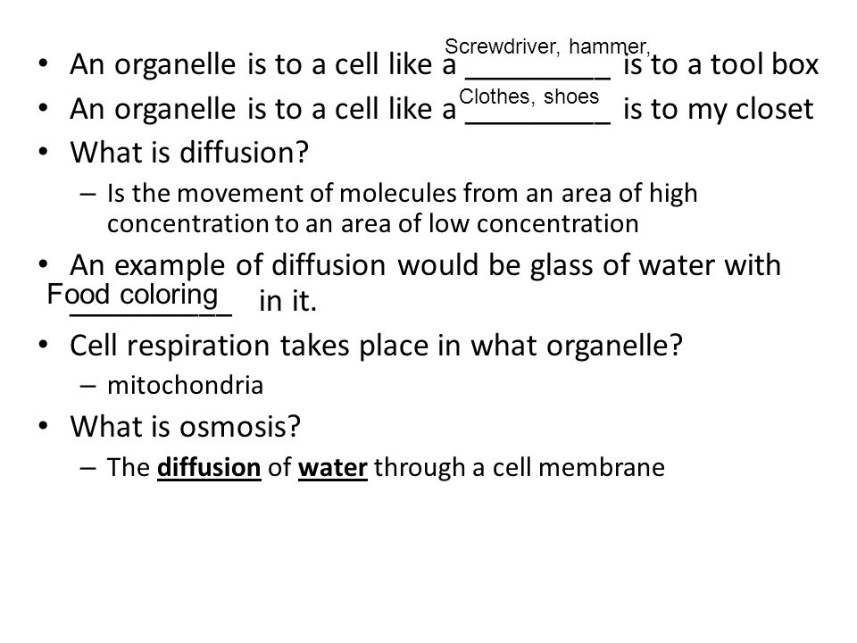 An organelle is to a cell like a _________ is to a tool box