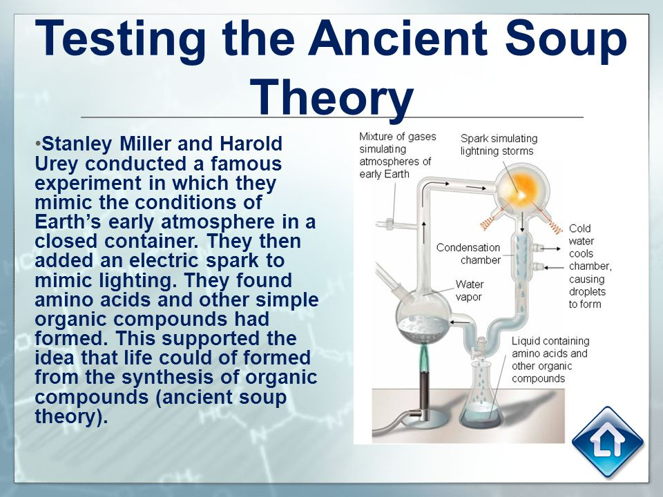 Testing the Ancient Soup Theory
