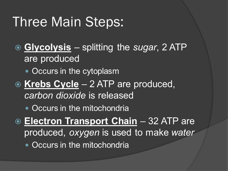 Three Main Steps: Glycolysis – splitting the sugar, 2 ATP are produced