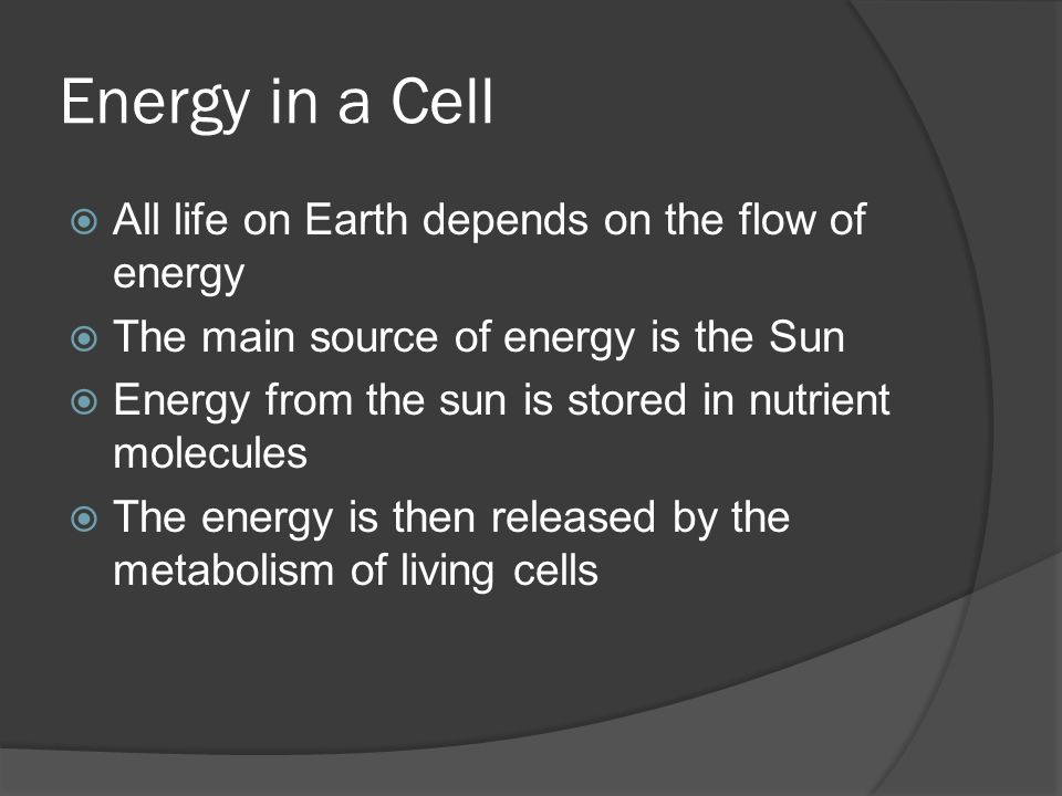 Energy in a Cell All life on Earth depends on the flow of energy