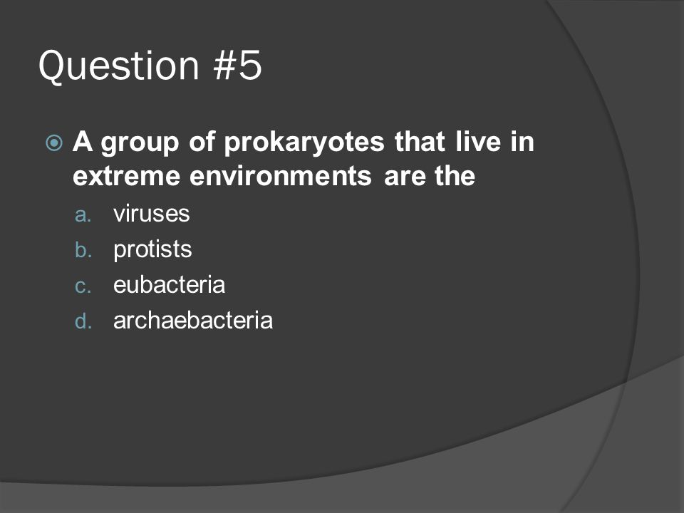 Question #5 A group of prokaryotes that live in extreme environments are the. viruses. protists. eubacteria.