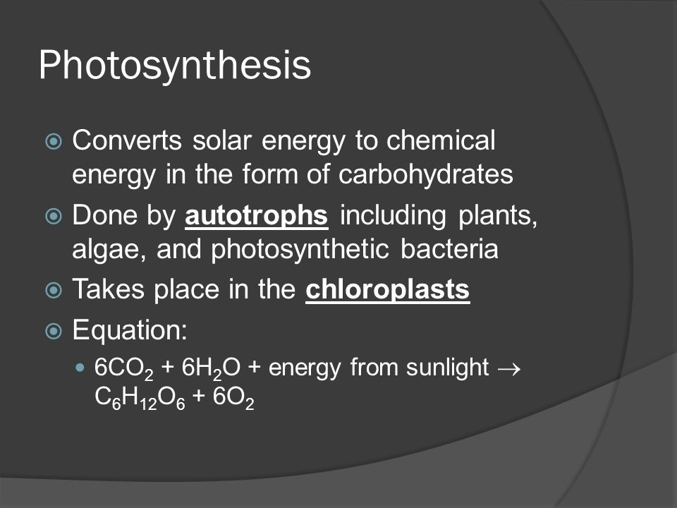 Photosynthesis Converts solar energy to chemical energy in the form of carbohydrates.