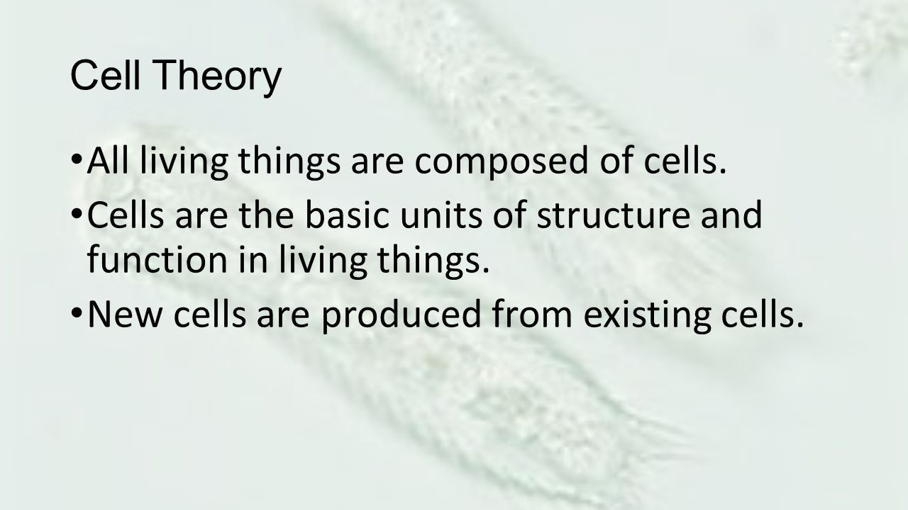 Cell Theory All living things are composed of cells. Cells are the basic units of structure and function in living things.