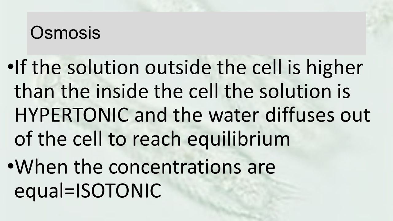 When the concentrations are equal=ISOTONIC