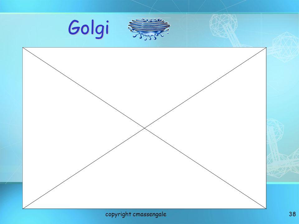 Golgi copyright cmassengale