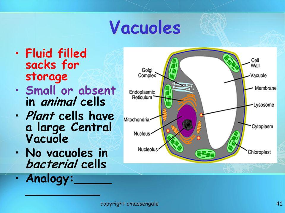 Vacuoles Fluid filled sacks for storage