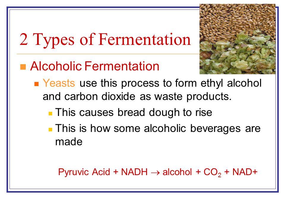 Pyruvic Acid + NADH  alcohol + CO2 + NAD+