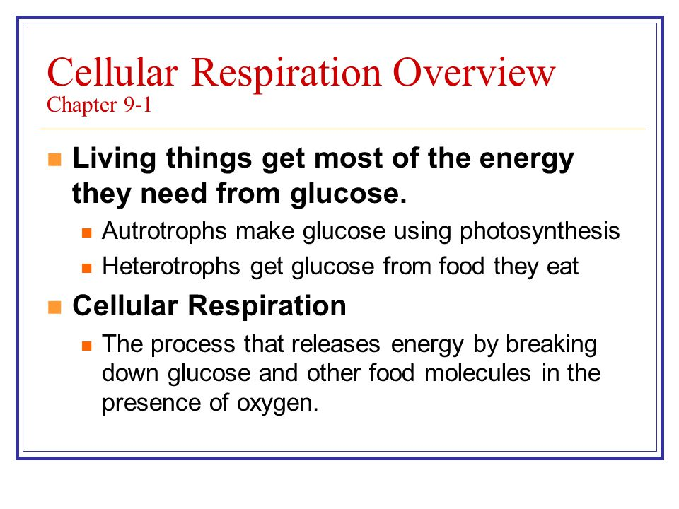 Cellular Respiration Overview Chapter 9-1