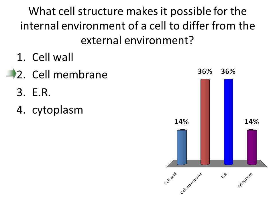 What cell structure makes it possible for the internal environment of a cell to differ from the external environment