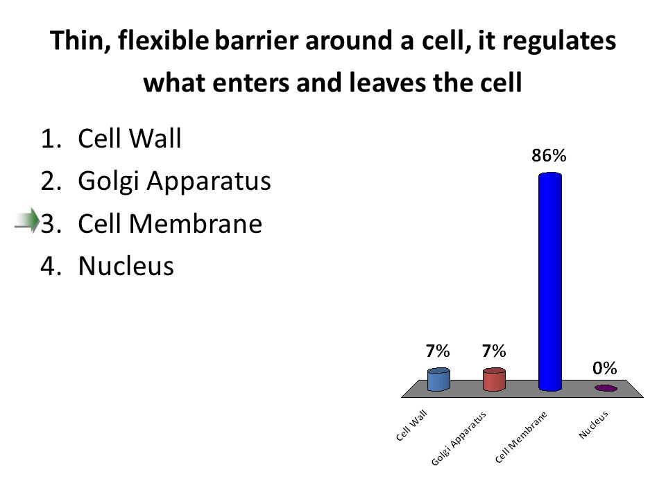 Thin, flexible barrier around a cell, it regulates what enters and leaves the cell