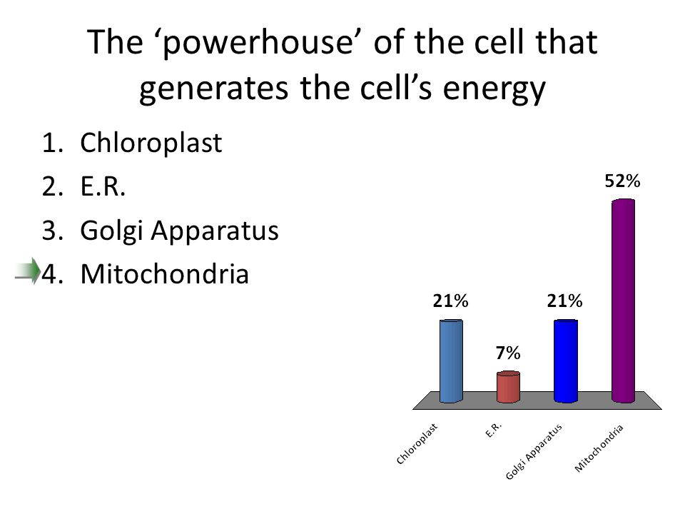 The 'powerhouse' of the cell that generates the cell's energy
