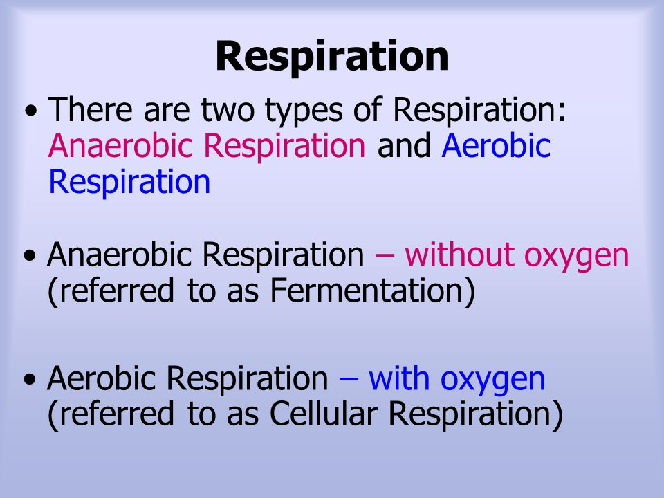 Respiration There are two types of Respiration: Anaerobic Respiration and Aerobic Respiration.