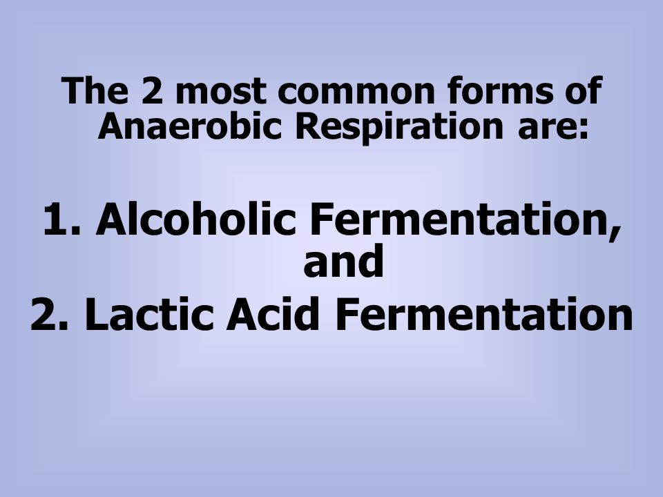 1. Alcoholic Fermentation, and 2. Lactic Acid Fermentation