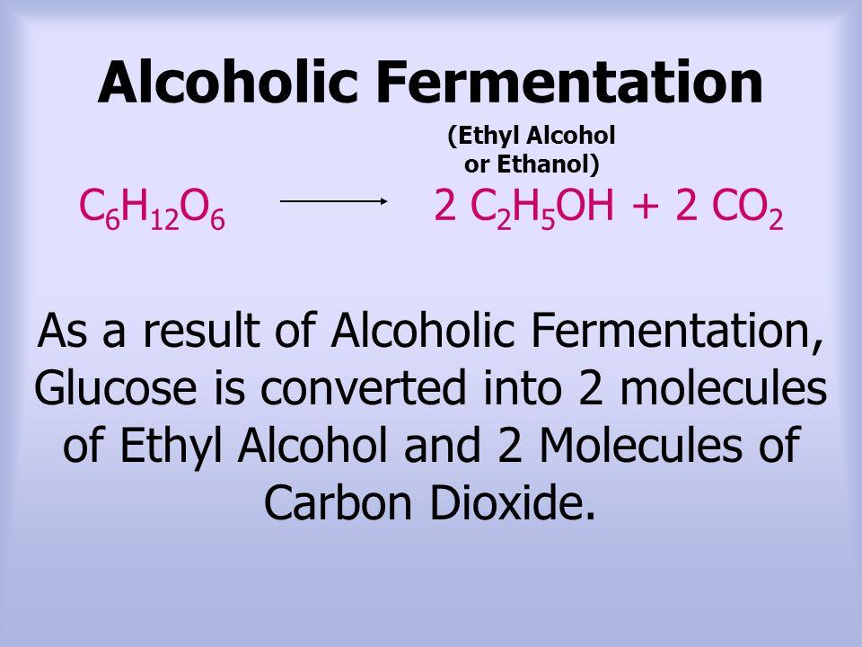 Alcoholic Fermentation C6H12O6 2 C2H5OH + 2 CO2