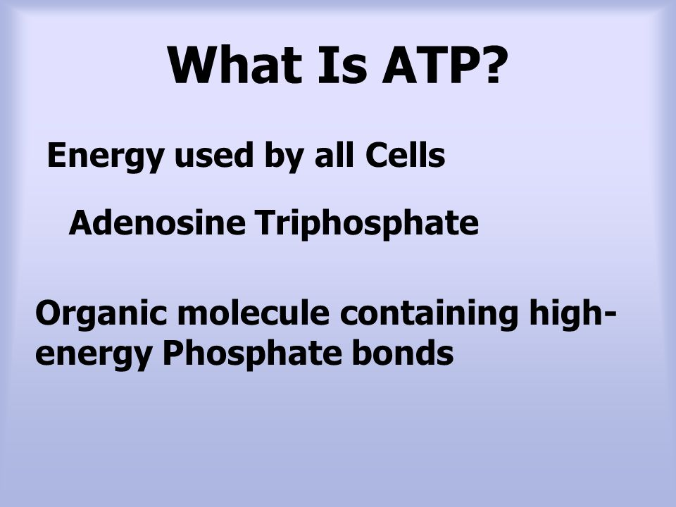 What Is ATP Energy used by all Cells Adenosine Triphosphate
