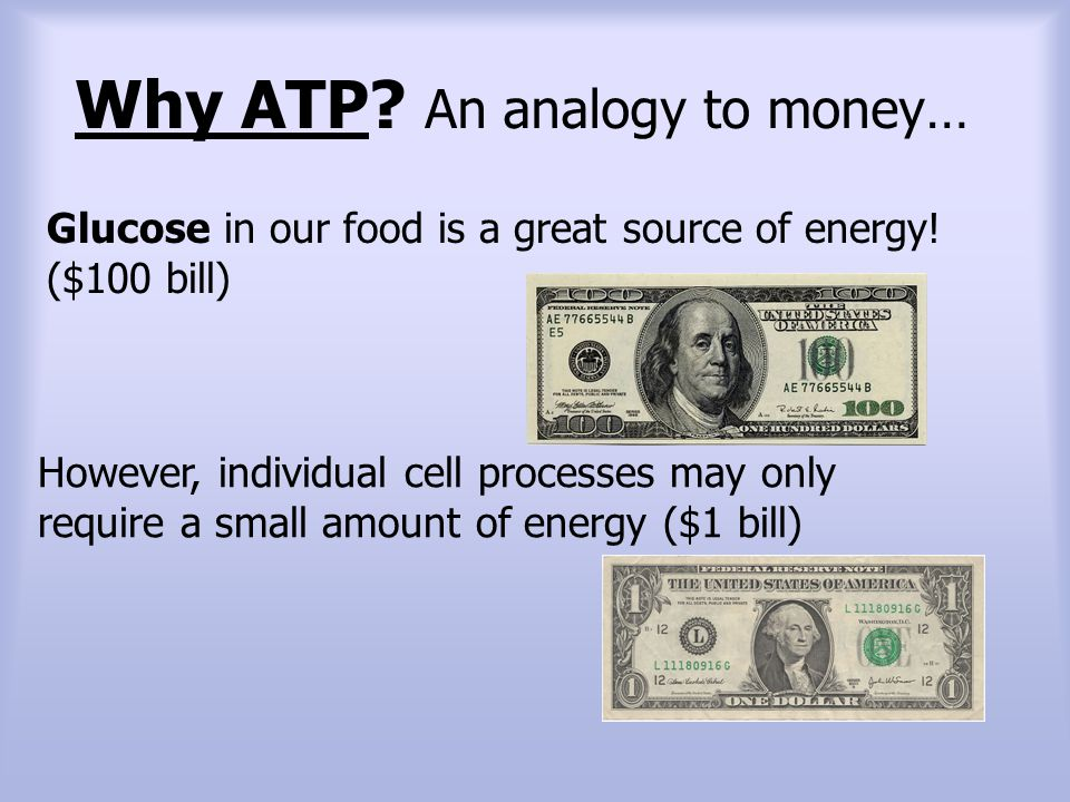 Why ATP An analogy to money…