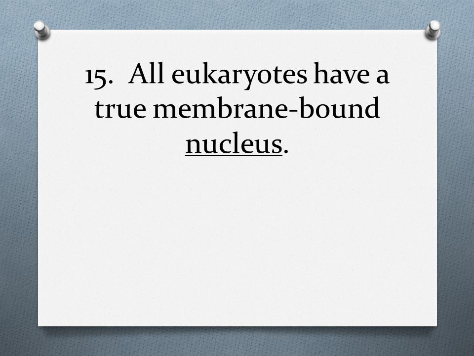 15. All eukaryotes have a true membrane-bound nucleus.