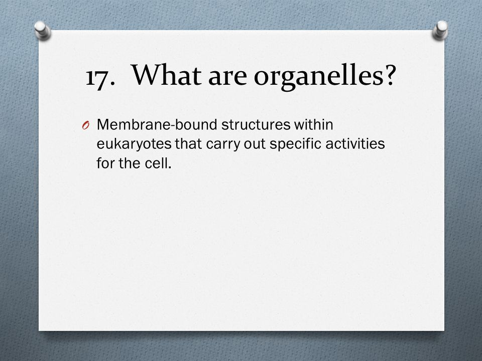 17. What are organelles.