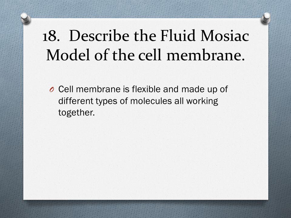 18. Describe the Fluid Mosiac Model of the cell membrane.