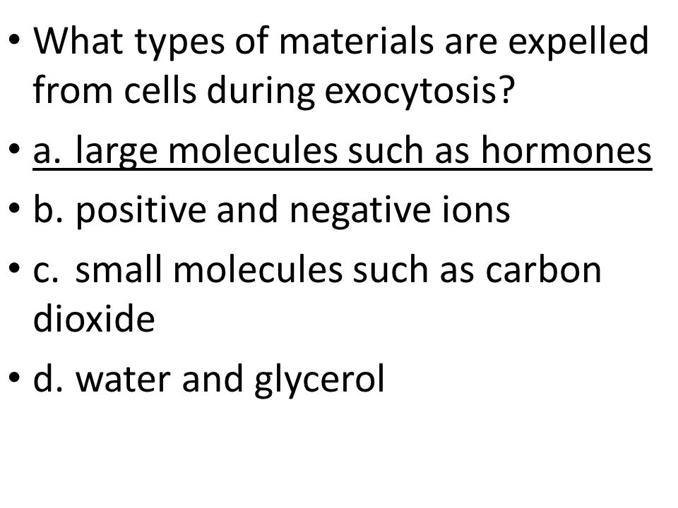 What types of materials are expelled from cells during exocytosis