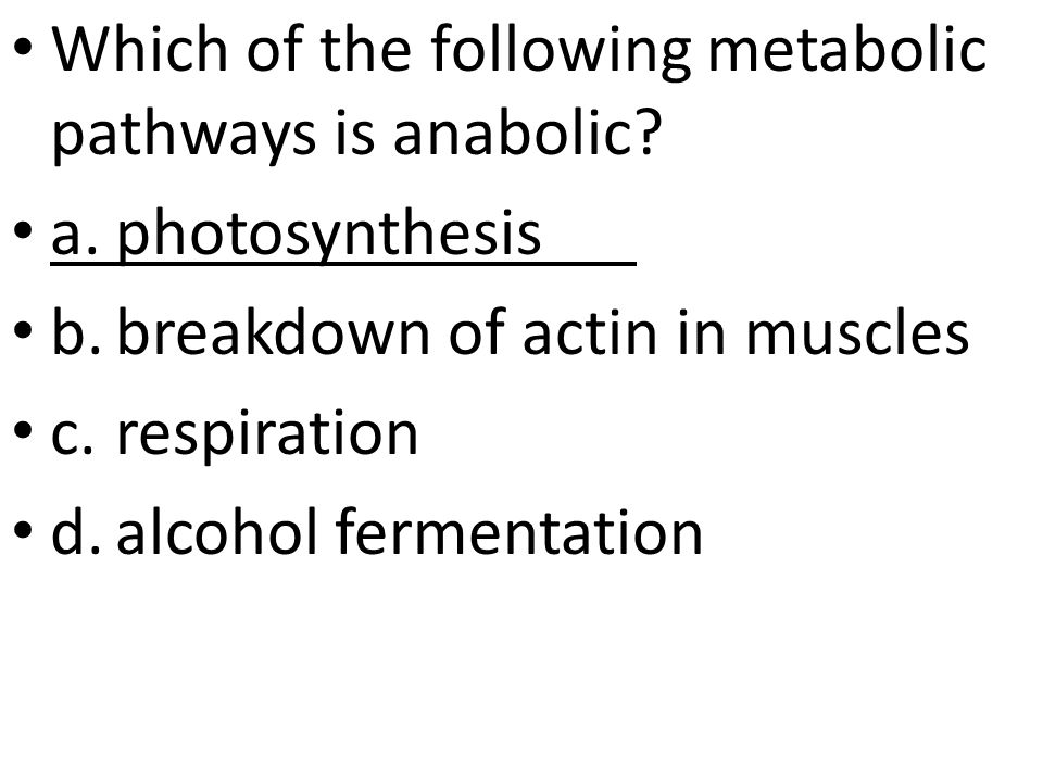 Which of the following metabolic pathways is anabolic